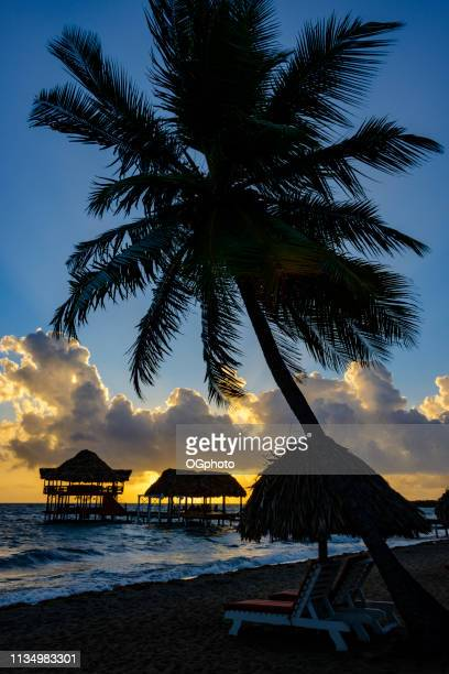 sunrise at the beach with silhouette of pier with thatched huts - ogphoto stock photos and pictures