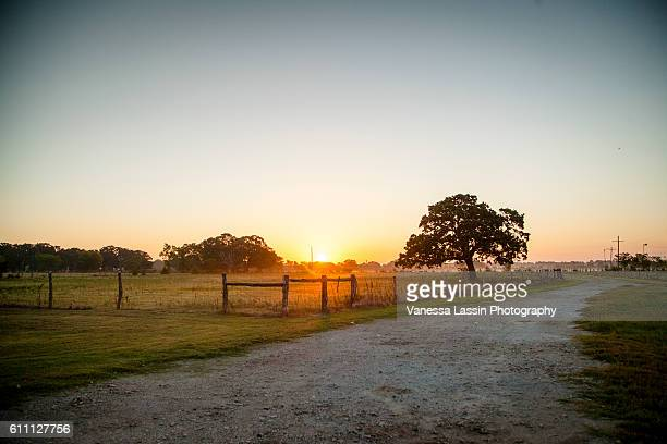 sunrise at the cowboys - vanessa lassin foto e immagini stock