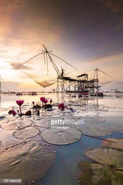 sunrise at the fisherman village yokyor pakpra pattalung thailand - 南東 ストックフォトと画像