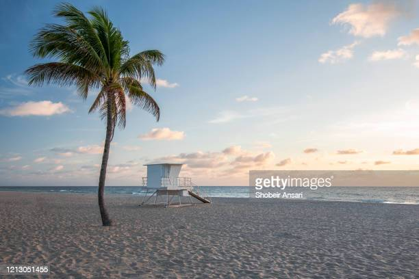 sunrise at the fort lauderdale beach, florida - sunrise fort lauderdale stock pictures, royalty-free photos & images