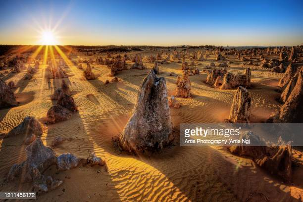 sunrise at the pinnacles, cervantes, nambung national park, western australia - western australia stock pictures, royalty-free photos & images