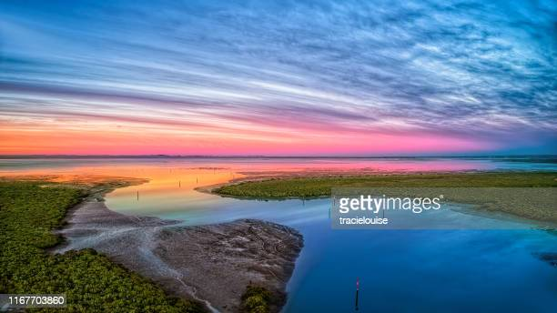 sunrise at tooradin foreshore - tropical tree stock pictures, royalty-free photos & images