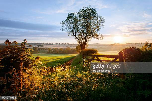 sunrise, broadway, cotswolds, england - worcestershire stock photos and pictures
