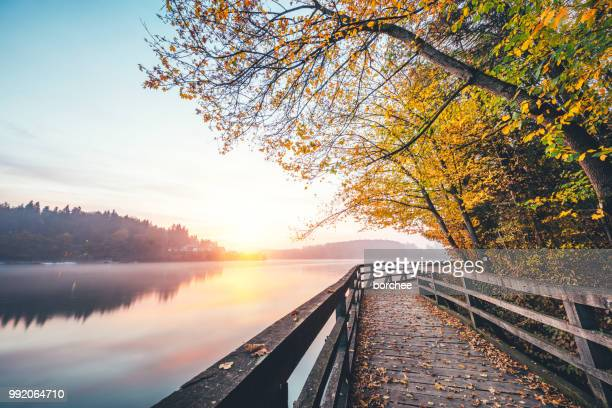 sunrise by the lake - footpath stock pictures, royalty-free photos & images