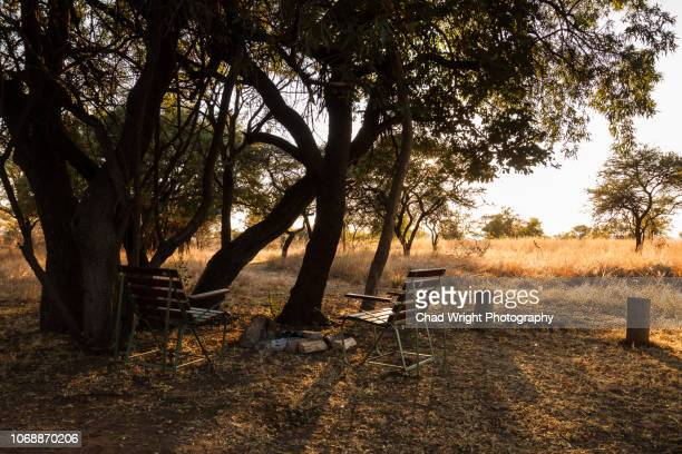 sunrise camp fire in the south african wilderness - limpopo province stock pictures, royalty-free photos & images