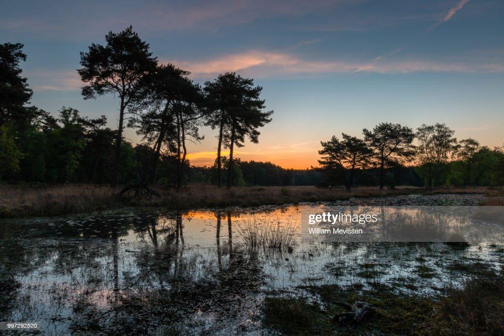 Sunrise Colors : Stockfoto