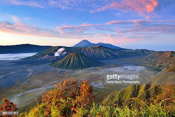 sunrise dawn at mt. bromo, indonesia - bromo tengger semeru national park stock photos and pictures