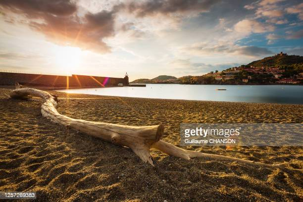 """sunrise from """"saint-vincent"""" beach in collioure, france. - catalogne photos et images de collection"""