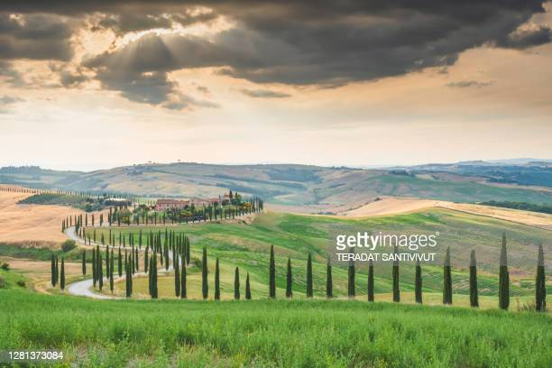 sunrise green meadow landscape view at green top hill farms plantation of olive groves and vineyards typical curved road with cypress at crete senesi in toscana, italia, europe - italia stockfoto's en -beelden