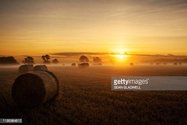 sunrise hay bales - lincolnshire stock pictures, royalty-free photos & images