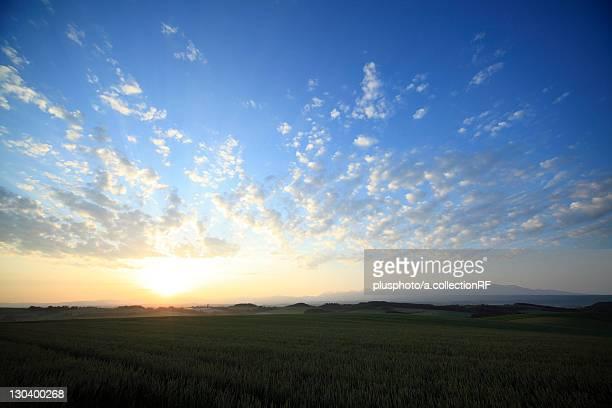sunrise, hokkaido prefecture, japan - plusphoto stock pictures, royalty-free photos & images