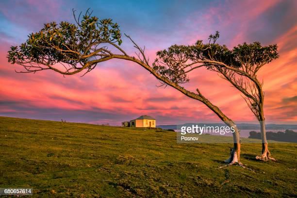 sunrise in darlington, an old convict town at tasmanian maria island. - タスマニア州 ストックフォトと画像