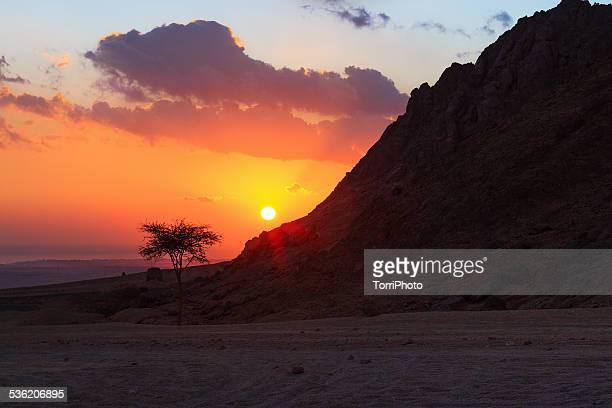 Sunrise in Egyptian desert