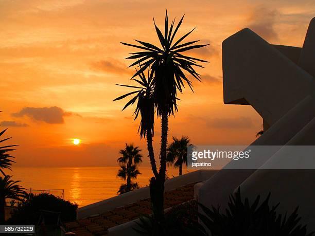 sunrise in estepona. andalusia - malaga photos et images de collection