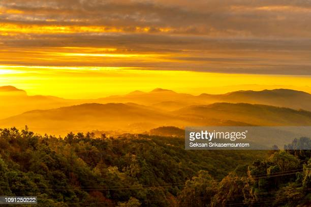 sunrise in forest mountain - may stock pictures, royalty-free photos & images
