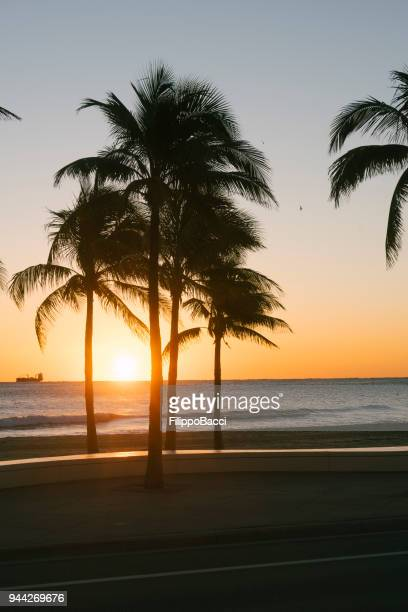 sunrise in fort lauderdale, florida - sunrise fort lauderdale stock pictures, royalty-free photos & images