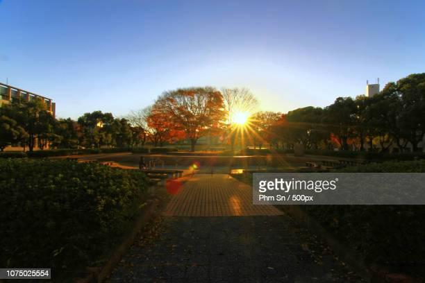 sunrise in nagoya univ. - 国立オリンピック競技場 ストックフォトと画像