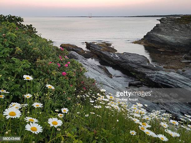 sunrise in newport, ri - newport rhode island stock photos and pictures