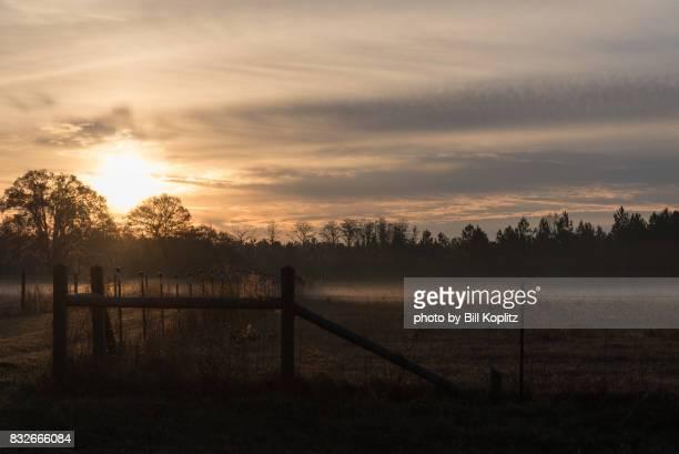 Sunrise in Rural Georgia