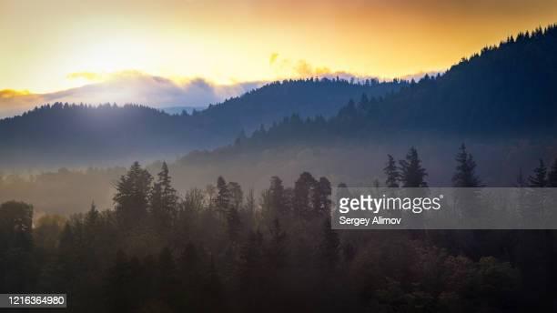 sunrise in schwarzwald highlands - baden baden stock-fotos und bilder
