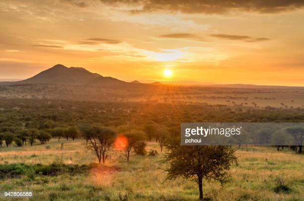 Sunrise in Serengeti national park, landscape with sunlight effect, Africa.