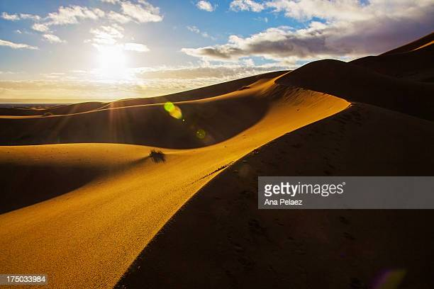 sunrise in the desert of morocco - merzouga stock pictures, royalty-free photos & images
