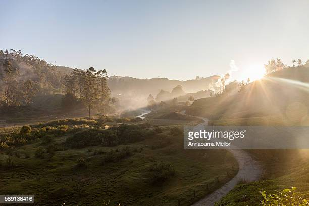 Sunrise in the hills of Munnar, Kerela, India