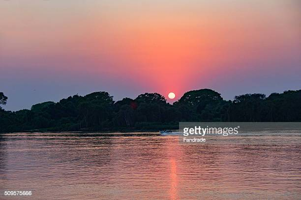 sunrise in the pantanal, brazil - cuiaba river stock photos and pictures