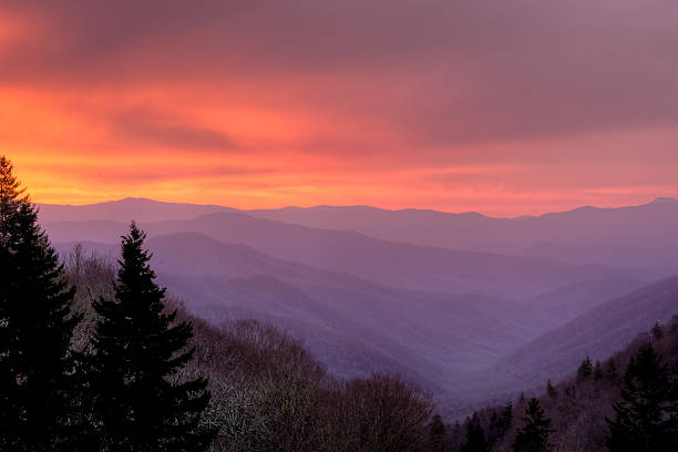 Sunrise In The Smoky Mountains Wall Art