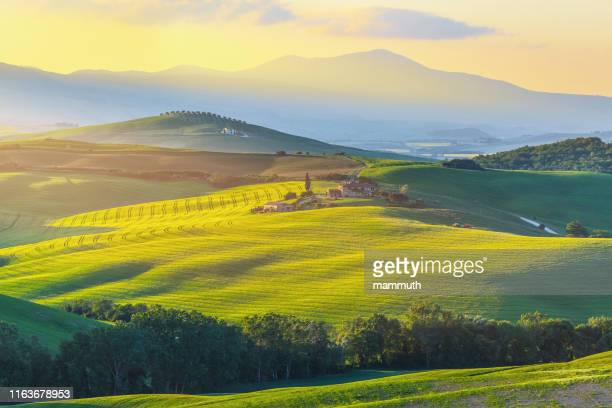 sunrise in tuscany - val d'orcia stock pictures, royalty-free photos & images