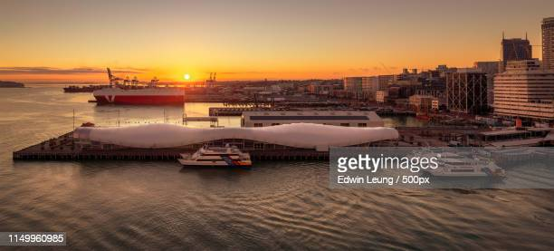 sunrise in viadict - auckland stock pictures, royalty-free photos & images