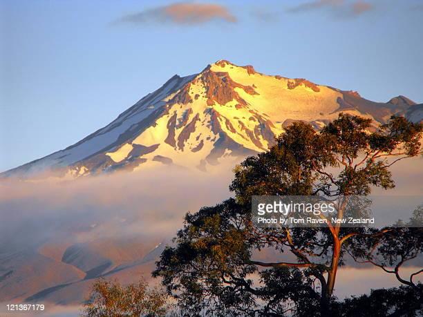 Sunrise light reflects off Mt Ruapehu
