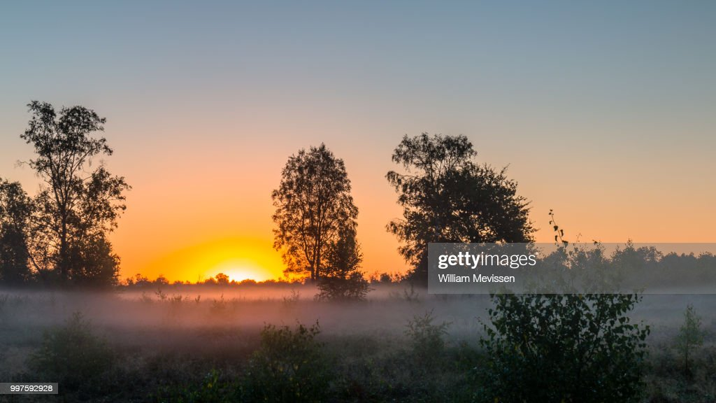 Sunrise Mist : Stockfoto