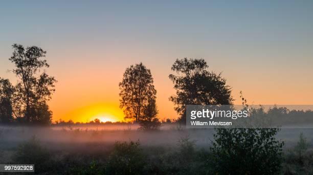 sunrise mist - william mevissen stockfoto's en -beelden