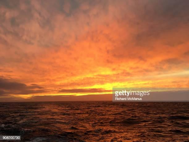 sunrise near saunders island. - 南極海 ストックフォトと画像