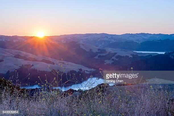 sunrise of tilden regional park - east bay regional park stock pictures, royalty-free photos & images