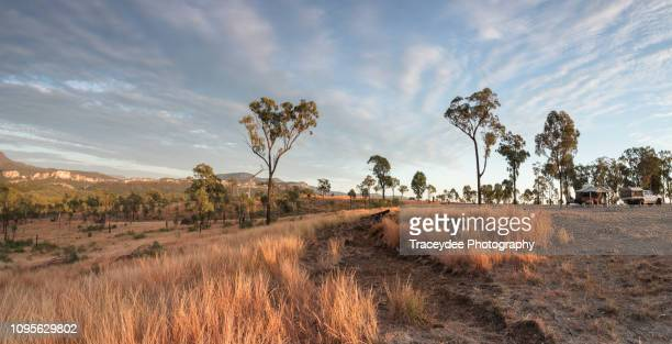 sunrise off the beaten track with a 4 wheel drive vehicle and campervan in the carnarvon gorge, queensland. - queensland stock pictures, royalty-free photos & images