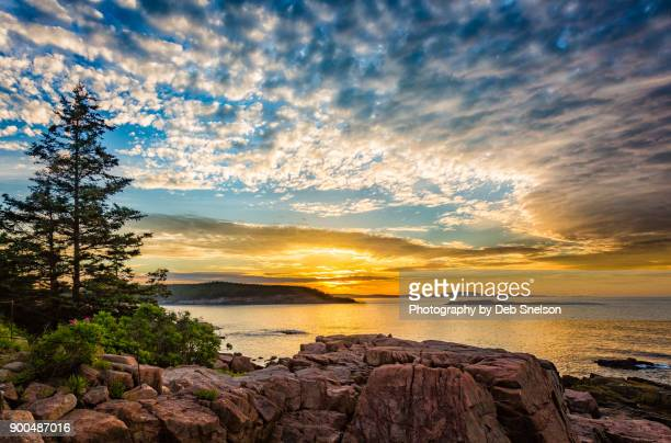 sunrise off the coast of acadia national park maine - new england usa stock pictures, royalty-free photos & images