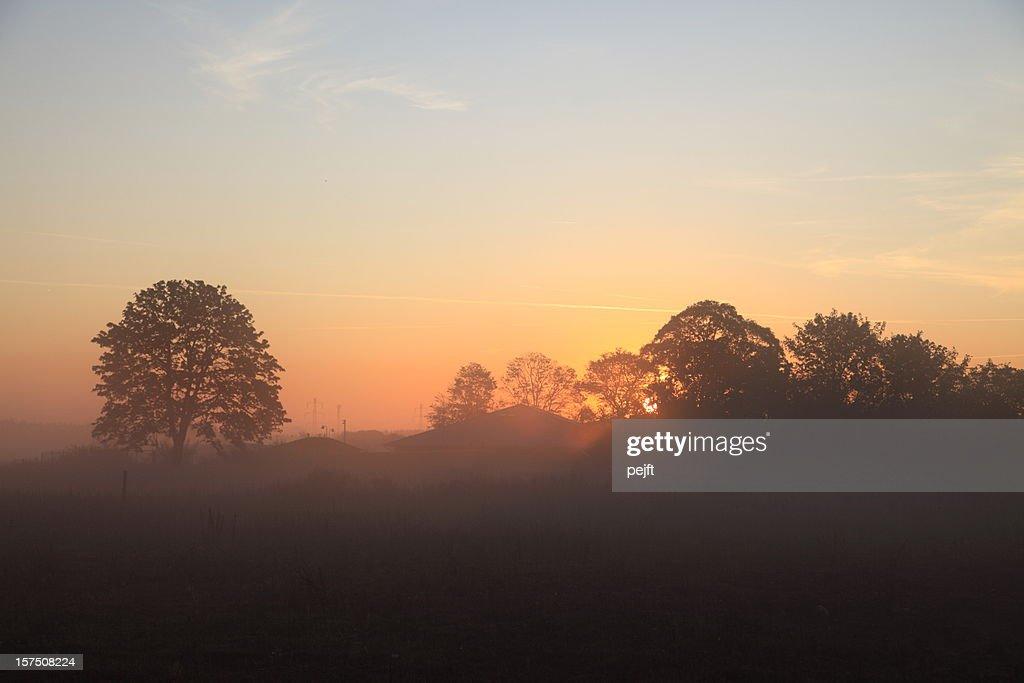 Sunrise on a beautiful misty morning : Stock Photo