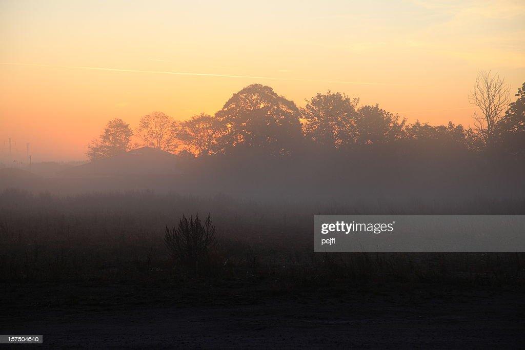 Sunrise on a misty morning : Stock Photo