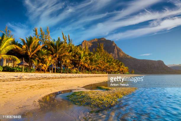 sunrise on a tropical sandy beach, le morne brabant, mauritius island - insel mauritius stock-fotos und bilder
