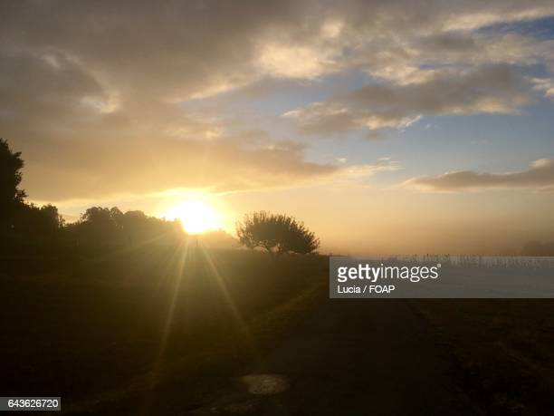 Sunrise on camino de santiago