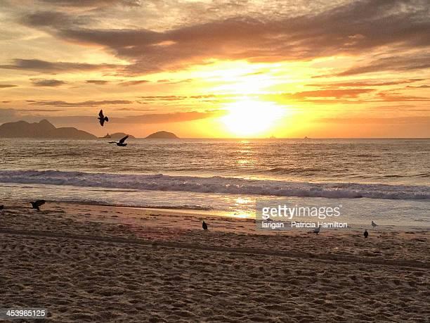 sunrise on copacabana beach - strand von copacabana stock-fotos und bilder