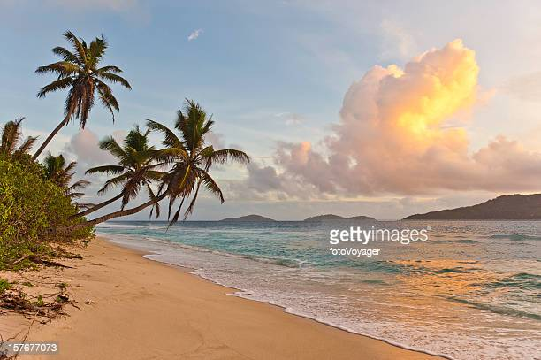 sunrise on deserted tropical island beach palm trees ocean surf - la digue island stock pictures, royalty-free photos & images