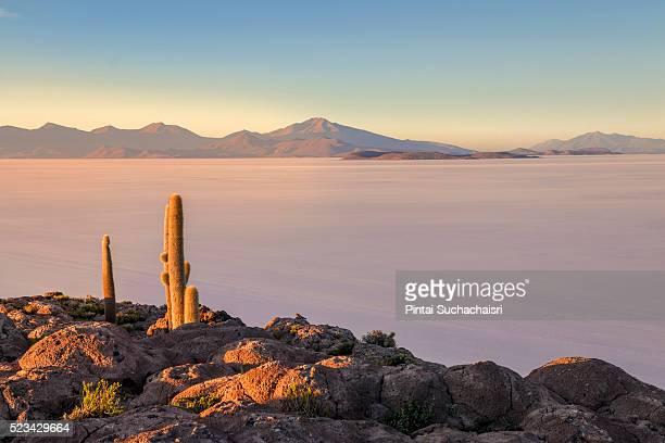 Sunrise on Isla Incahuasi in Salar de Uyuni, Bolivia