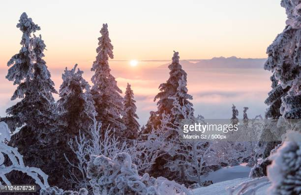 sunrise on tatra - babia góra mountain stock pictures, royalty-free photos & images