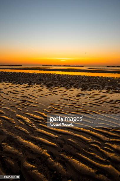 sunrise on the beach of lido delle nazioni, ferrara - ferrara stock pictures, royalty-free photos & images