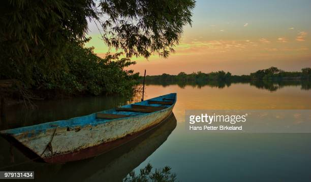 sunrise on the gambia river - gambia stock photos and pictures