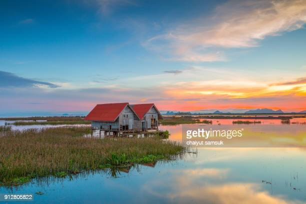 sunrise on the lake, nature landscape - inle lake stock pictures, royalty-free photos & images
