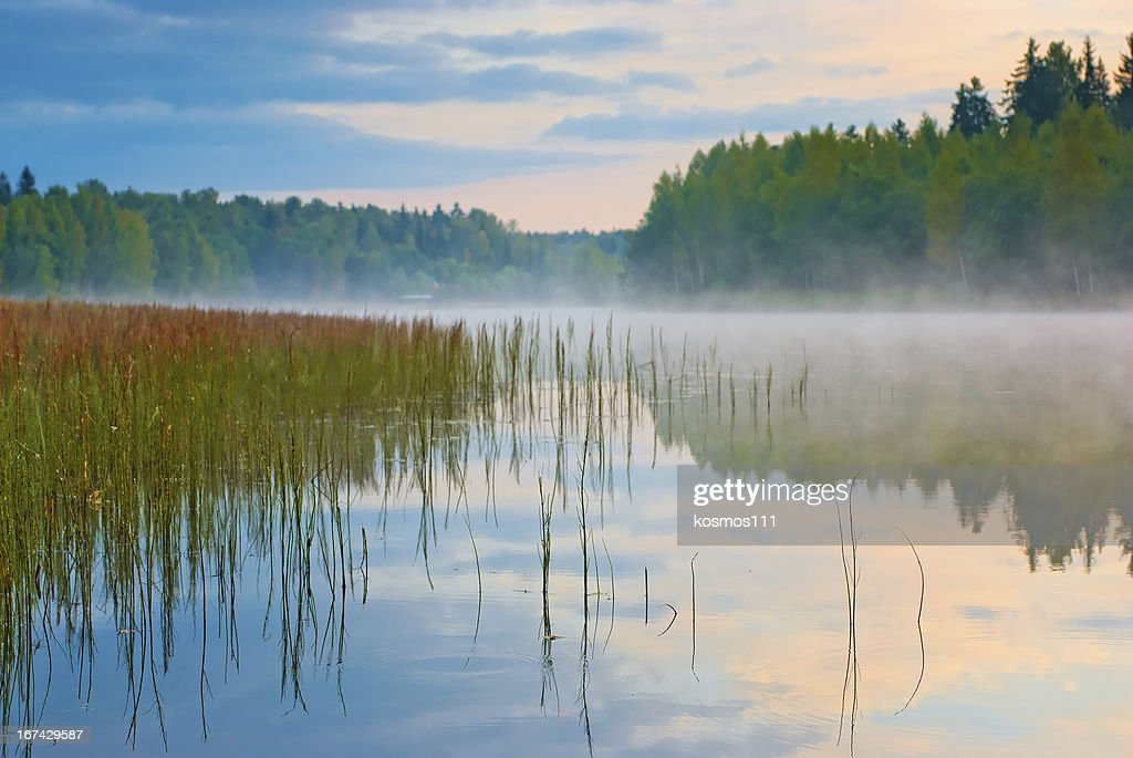Sunrise on the lake with mist : Stock Photo